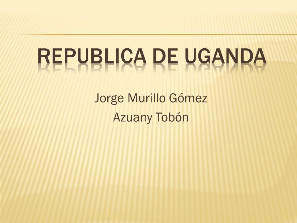Jorge Murillo Gómez Azuany Tobón