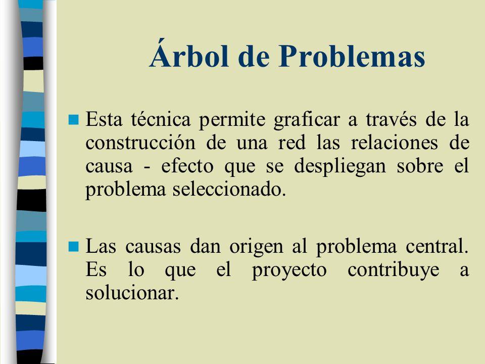 Árbol de Problemas Esta técnica permite graficar a través de la construcción de una red las relaciones de causa - efecto que se despliegan sobre el pr