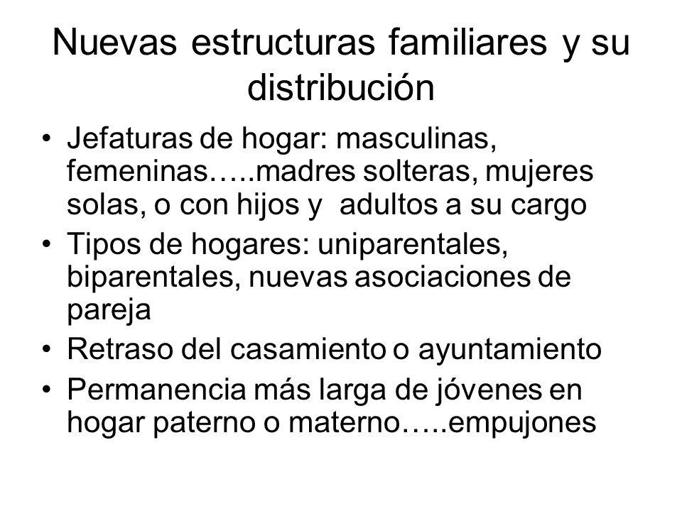 Nuevas estructuras familiares y su distribución Jefaturas de hogar: masculinas, femeninas…..madres solteras, mujeres solas, o con hijos y adultos a su