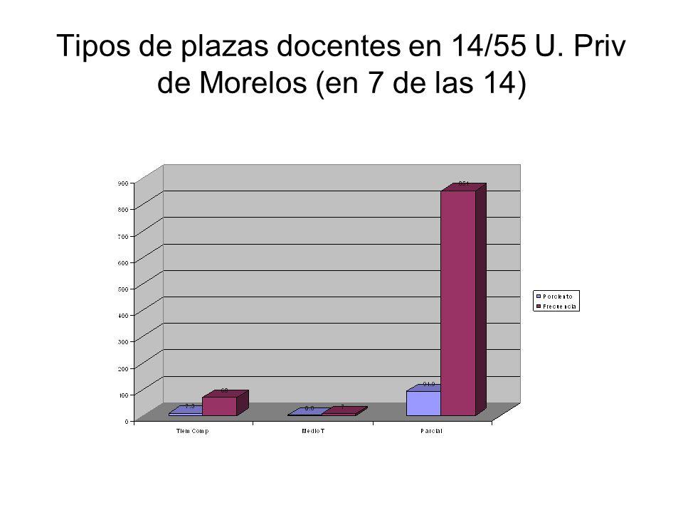 Tipos de plazas docentes en 14/55 U. Priv de Morelos (en 7 de las 14)