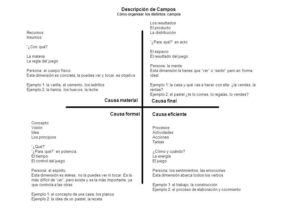 Descripción de Campos Cómo organizar los distintos campos Causa formal Causa final Causa eficiente Causa material Recursos Insumos ¿Con qué.
