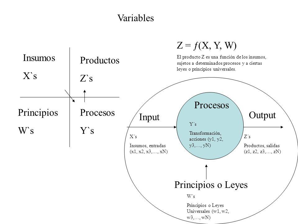 Variables Input Output X´s Insumos, entradas (x1, x2, x3,…, xN) Z´s Productos, salidas (z1, z2, z3,…, zN) Procesos Y´s Transformación, acciones (y1, y2, y3,…, yN) Principios o Leyes W´s Principios o Leyes Universales (w1, w2, w3,…, wN) Z = ƒ(X, Y, W) El producto Z es una función de los insumos, sujetos a determinados procesos y a ciertas leyes o principios universales.