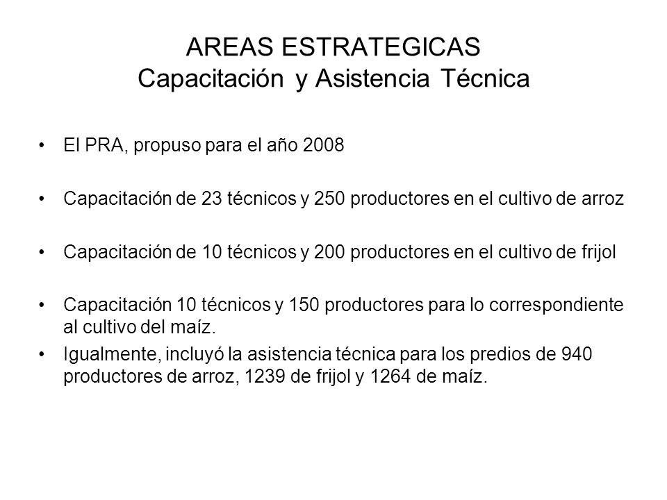 AREAS ESTRATEGICAS Capacitación y Asistencia Técnica El PRA, propuso para el año 2008 Capacitación de 23 técnicos y 250 productores en el cultivo de a