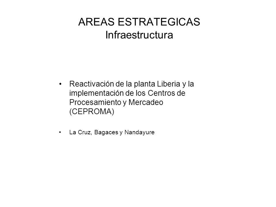AREAS ESTRATEGICAS Infraestructura Reactivación de la planta Liberia y la implementación de los Centros de Procesamiento y Mercadeo (CEPROMA) La Cruz,