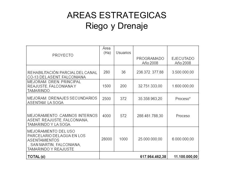 AREAS ESTRATEGICAS Riego y Drenaje PROYECTO Área (Ha)Usuarios PROGRAMADO Año 2008 EJECUTADO Año 2008 REHABILITACIÓN PARCIAL DEL CANAL CO-13 DEL ASENT.