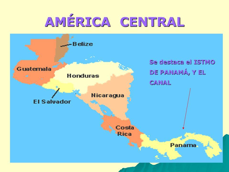 Crecimiento demográfico Nicaragua: dinámica demográfica, 1990- 2005 total natural social total natural social 2008 5,668,820 1.32 2.27 0.95% 2008 5,668,820 1.32 2.27 0.95% 2015 6,180,410 1.22 0.815 2015 6,180,410 1.22 0.815 2020 6,518,483 1.07 1.80 0.73% 2020 6,518,483 1.07 1.80 0.73%