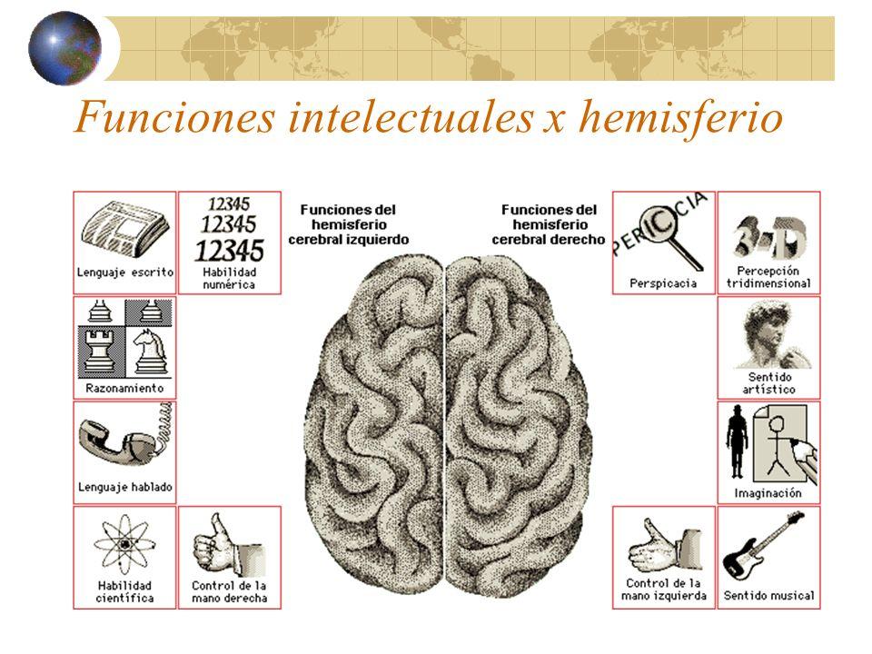 Funciones intelectuales x hemisferio