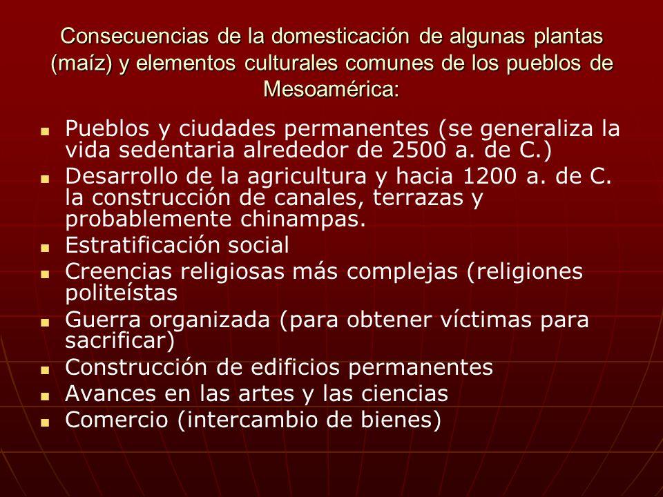 Consecuencias de la domesticación de algunas plantas (maíz) y elementos culturales comunes de los pueblos de Mesoamérica: Pueblos y ciudades permanent
