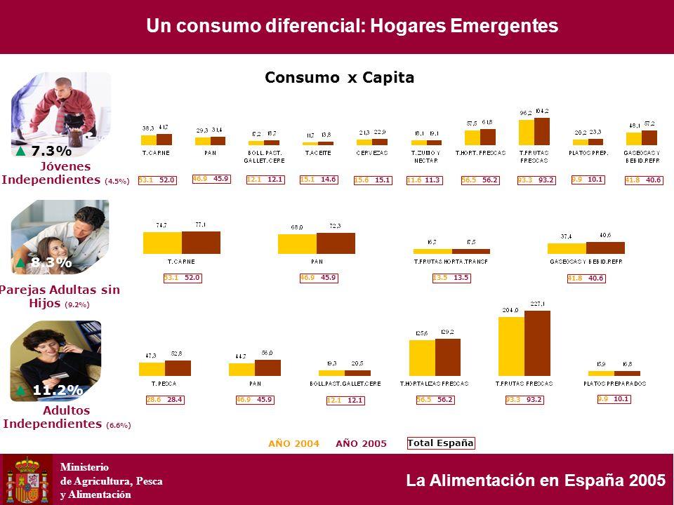 Ministerio de Agricultura, Pesca y Alimentación La Alimentación en España 2005 4.5 7.3% 8.3% 11.2% AÑO 2004AÑO 2005 53.1 52.0 46.9 45.9 12.1 15.1 14.6