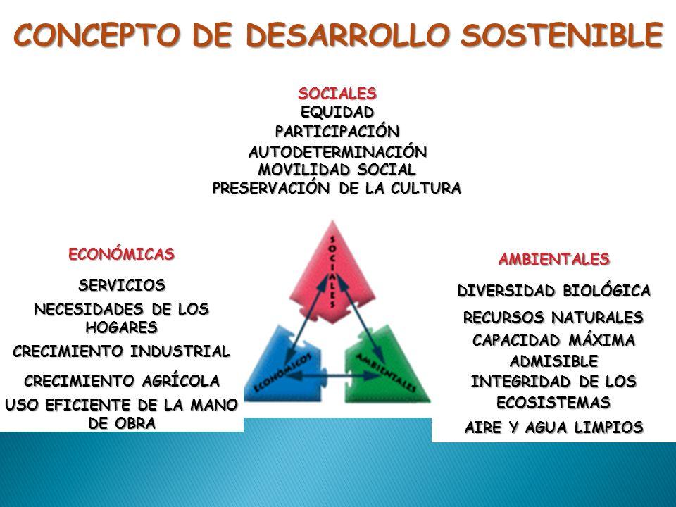 SOCIALES EQUIDAD PARTICIPACIÓN AUTODETERMINACIÓN MOVILIDAD SOCIAL PRESERVACIÓN DE LA CULTURA ECONÓMICASSERVICIOS NECESIDADES DE LOS HOGARES CRECIMIENT