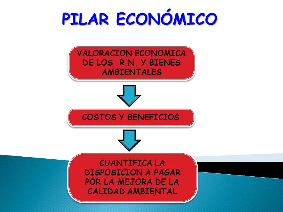 PILAR ECONÓMICO CUANTIFICA LA DISPOSICION A PAGAR POR LA MEJORA DE LA CALIDAD AMBIENTAL VALORACION ECONOMICA DE LOS R.N. Y BIENES AMBIENTALES COSTOS Y