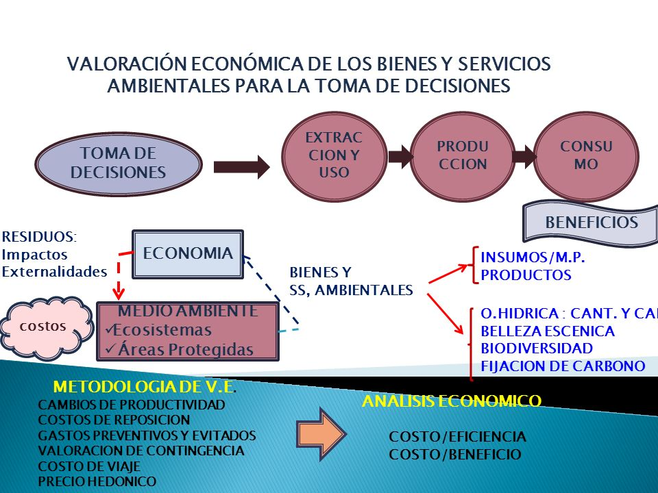 VALORACIÓN ECONÓMICA DE LOS BIENES Y SERVICIOS AMBIENTALES PARA LA TOMA DE DECISIONES TOMA DE DECISIONES PRODU CCION CONSU MO EXTRAC CION Y USO BENEFI