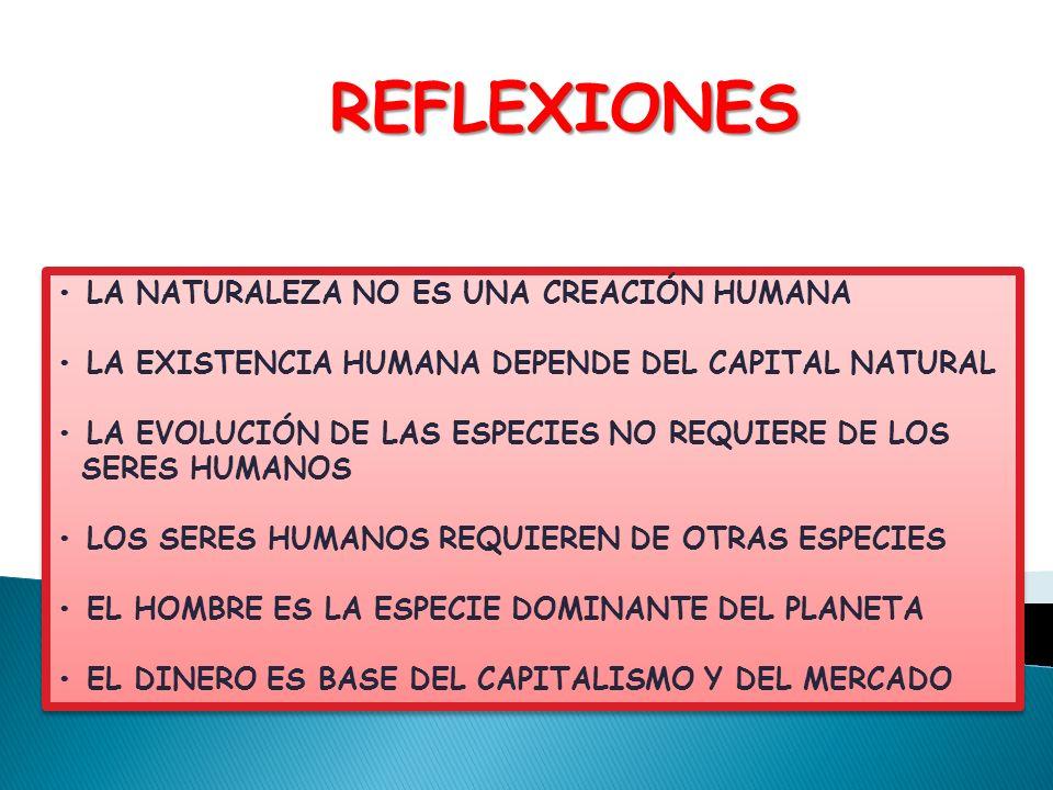 LA NATURALEZA NO ES UNA CREACIÓN HUMANA LA EXISTENCIA HUMANA DEPENDE DEL CAPITAL NATURAL LA EVOLUCIÓN DE LAS ESPECIES NO REQUIERE DE LOS SERES HUMANOS