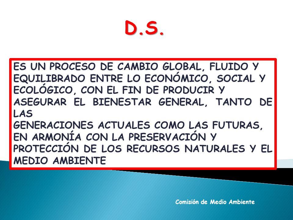 PILAR ECONÓMICO LA EXPLOTACIÓN RACIONAL DE RECURSOS NATURALES Y UNA GESTIÓN ADECUADA DE ACTIVIDADES Y PROYECTOS ECONÓMICOS SON COMPATIBLES SI LA EFICIENCIA ECONÓMICA GUARDA EQUILIBRIO CON LA PROTECCION DEL MEDIO AMBIENTE.
