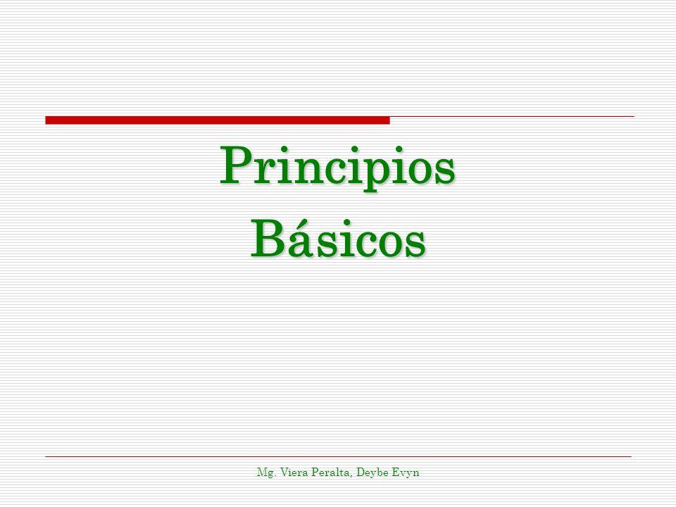 PrincipiosBásicos Mg. Viera Peralta, Deybe Evyn