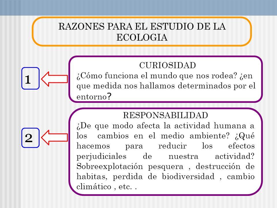 RAZONES PARA EL ESTUDIO DE LA ECOLOGIA CURIOSIDAD ¿Cómo funciona el mundo que nos rodea? ¿en que medida nos hallamos determinados por el entorno ? RES