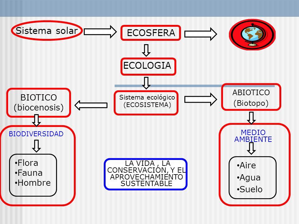 ECOSFERA ECOLOGIA Sistema ecológico (ECOSISTEMA) ABIOTICO (Biotopo) MEDIO AMBIENTE Aire Agua Suelo LA VIDA, LA CONSERVACION, Y EL APROVECHAMIENTO SUST