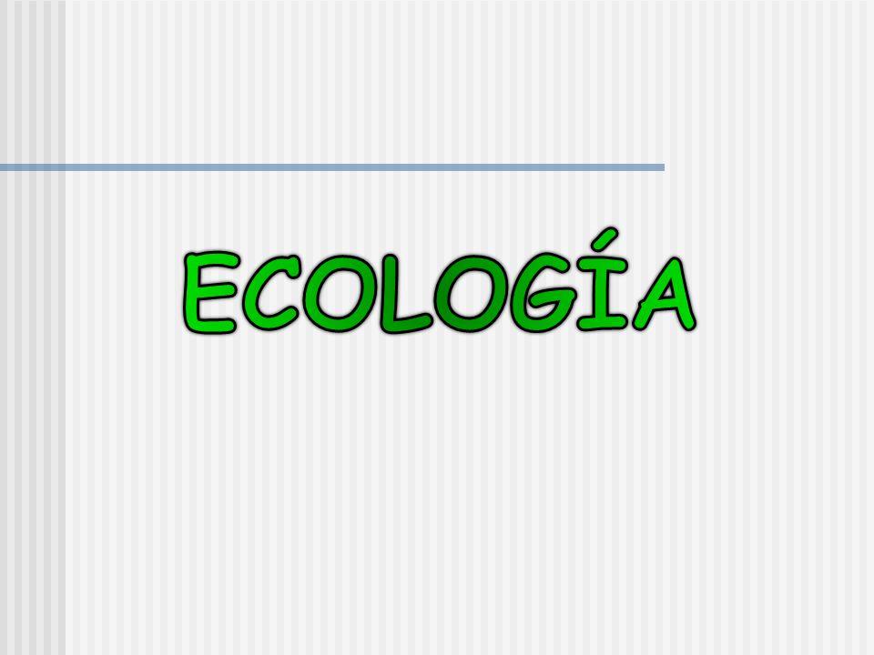 LA ECOLOGIA COMO CIENCIA MULTIDICIPLINADIA Un tema complejo como como es el ambiente no se puede abordar desde una sola ciencia.