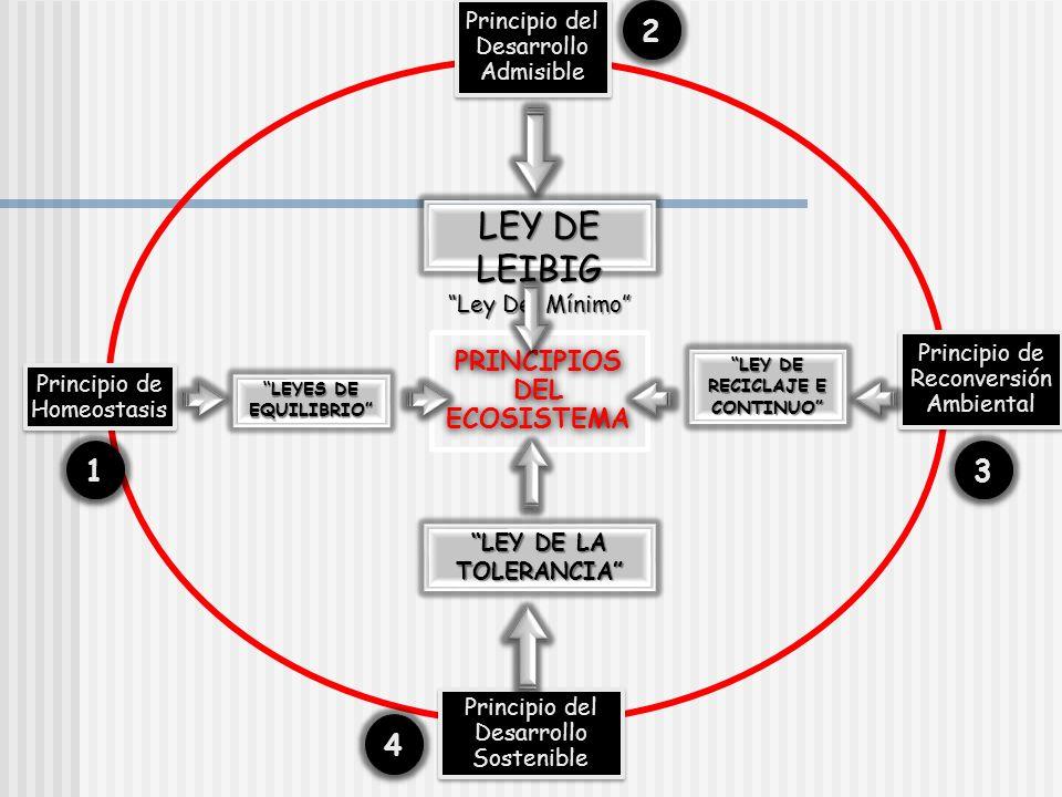 PRINCIPIOS DEL ECOSISTEMA Principio de Homeostasis Principio del Desarrollo Admisible Principio de Reconversión Ambiental Principio del Desarrollo Sos