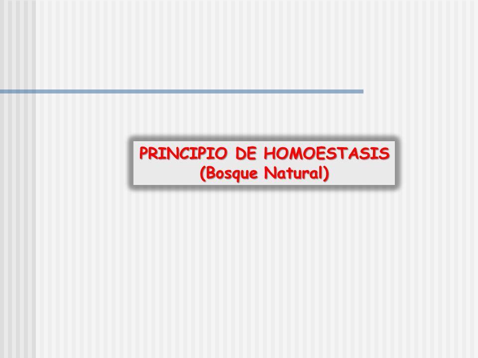 PRINCIPIO DE HOMOESTASIS (Bosque Natural)