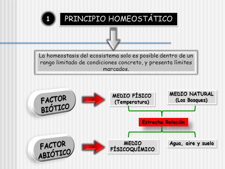 PRINCIPIO HOMEOSTÁTICO 11 La homeostasis del ecosistema solo es posible dentro de un rango limitado de condiciones concreto, y presenta límites marcad