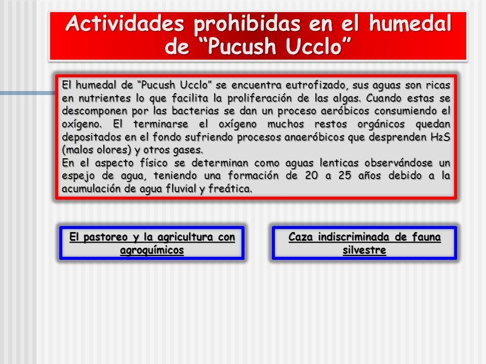 Actividades prohibidas en el humedal de Pucush Ucclo El humedal de Pucush Ucclo se encuentra eutrofizado, sus aguas son ricas en nutrientes lo que fac