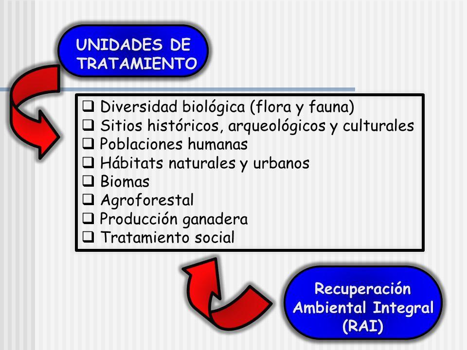 UNIDADES DE TRATAMIENTO TRATAMIENTO UNIDADES DE TRATAMIENTO TRATAMIENTO Recuperación Ambiental Integral (RAI)Recuperación (RAI) Diversidad biológica (