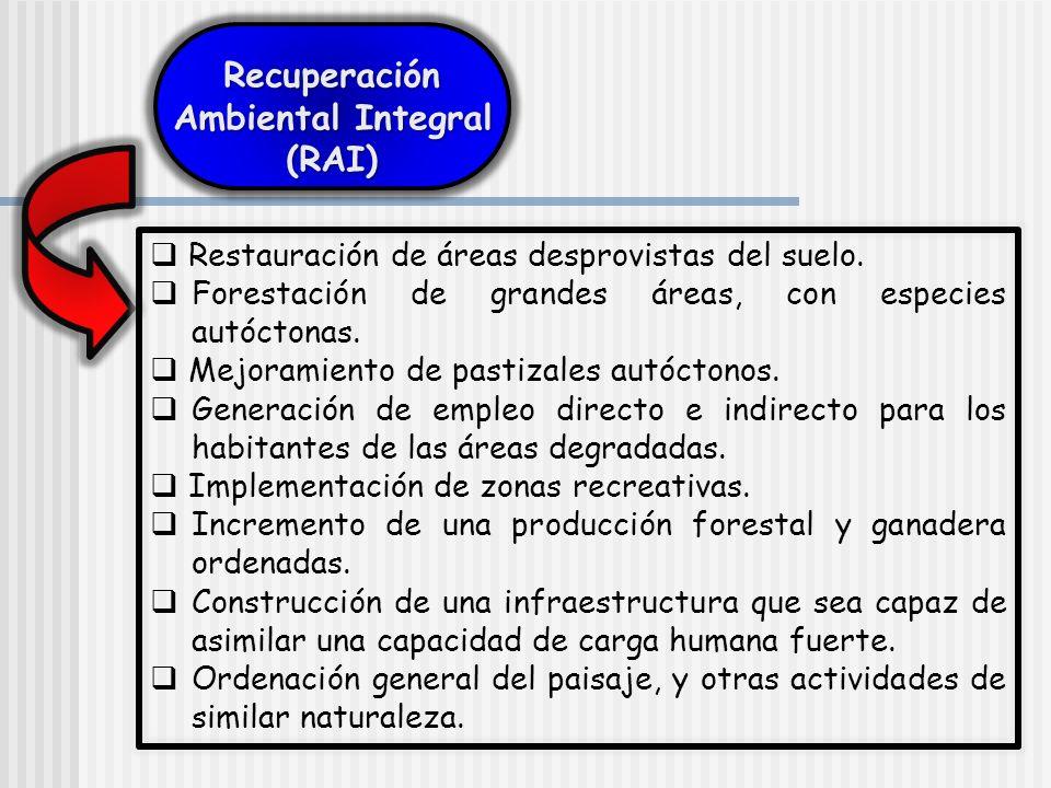 Restauración de áreas desprovistas del suelo. Forestación de grandes áreas, con especies autóctonas. Mejoramiento de pastizales autóctonos. Generación