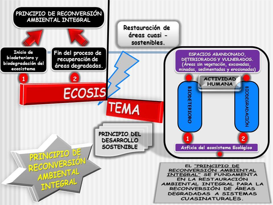 2211 PRINCIPIO DE RECONVERSIÓN AMBIENTAL INTEGRAL PRINCIPIO DE RECONVERSIÓN AMBIENTAL INTEGRAL Inicio de biodeterioro y biodegradación del ecosistema