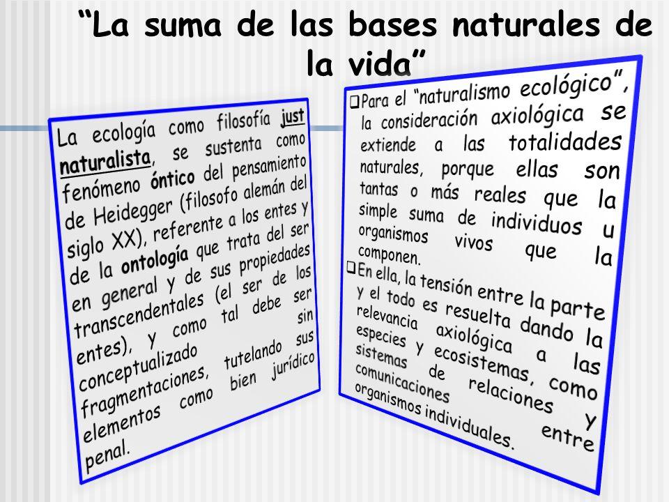 La suma de las bases naturales de la vida