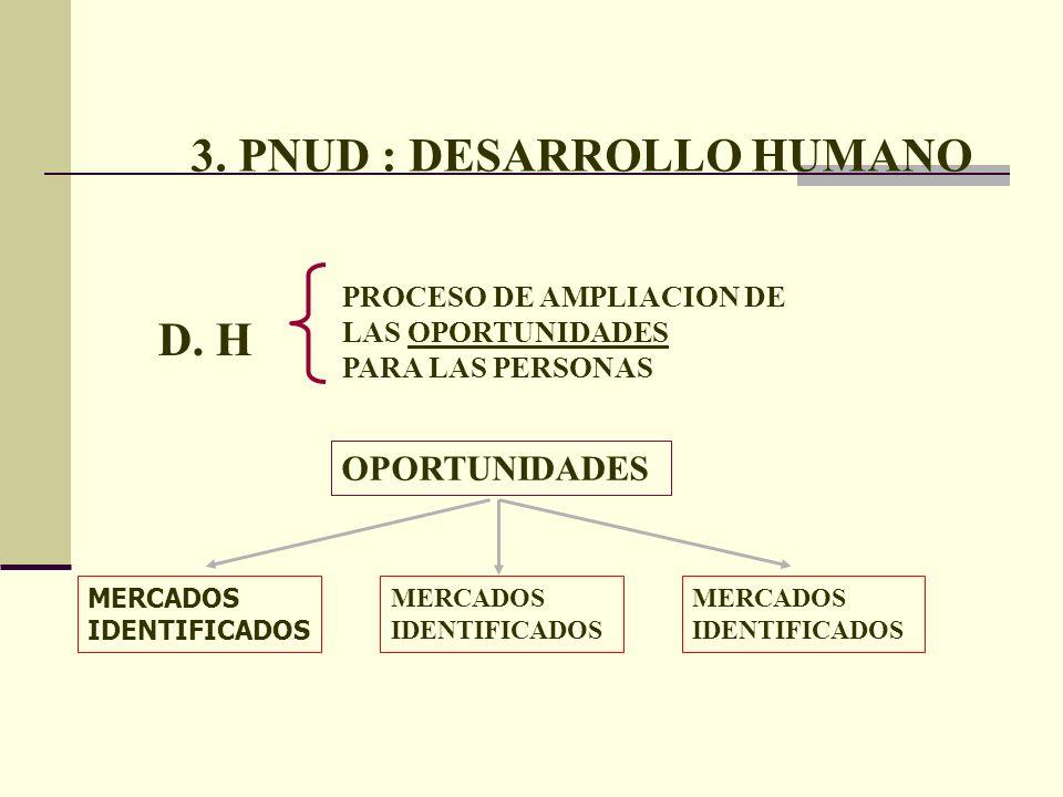 3. PNUD : DESARROLLO HUMANO D. H PROCESO DE AMPLIACION DE LAS OPORTUNIDADES PARA LAS PERSONAS OPORTUNIDADES MERCADOS IDENTIFICADOS MERCADOS IDENTIFICA