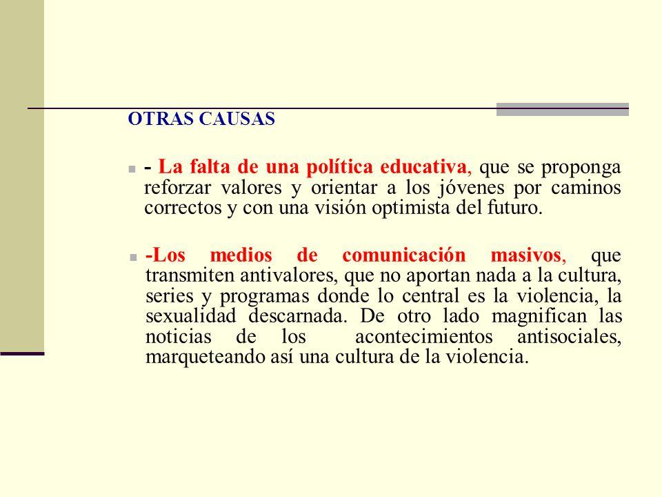 OTRAS CAUSAS - La falta de una política educativa, que se proponga reforzar valores y orientar a los jóvenes por caminos correctos y con una visión op