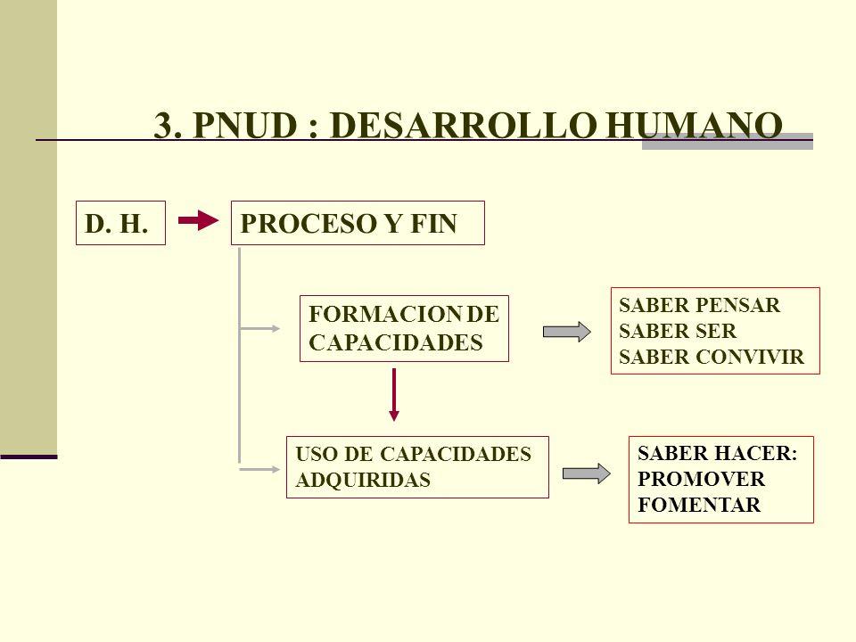 3. PNUD : DESARROLLO HUMANO SABER PENSAR SABER SER SABER CONVIVIR USO DE CAPACIDADES ADQUIRIDAS SABER HACER: PROMOVER FOMENTAR FORMACION DE CAPACIDADE