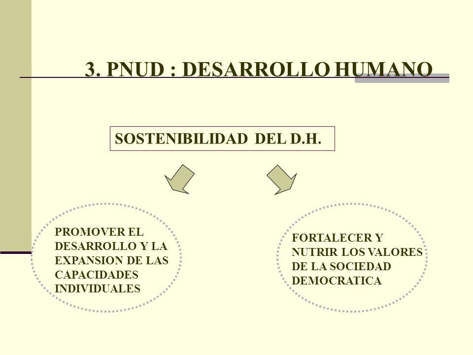 3. PNUD : DESARROLLO HUMANO SOSTENIBILIDAD DEL D.H. FORTALECER Y NUTRIR LOS VALORES DE LA SOCIEDAD DEMOCRATICA PROMOVER EL DESARROLLO Y LA EXPANSION D
