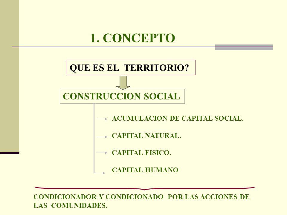 1. CONCEPTO QUE ES EL TERRITORIO? CONSTRUCCION SOCIAL ACUMULACION DE CAPITAL SOCIAL. CAPITAL NATURAL. CAPITAL FISICO. CAPITAL HUMANO CONDICIONADOR Y C