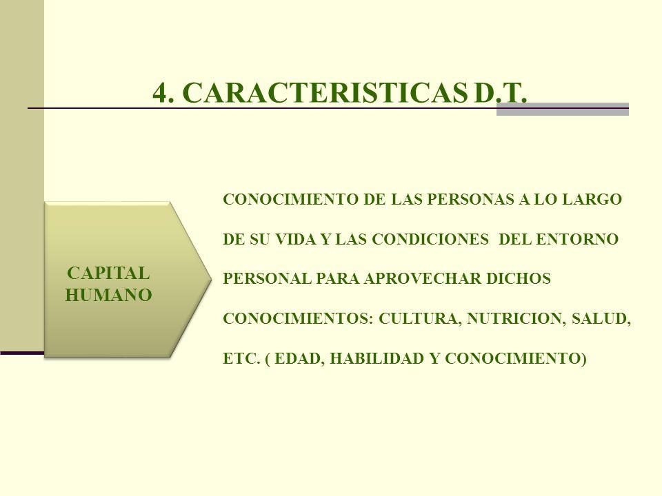 4. CARACTERISTICAS D.T. CAPITAL HUMANO CONOCIMIENTO DE LAS PERSONAS A LO LARGO DE SU VIDA Y LAS CONDICIONES DEL ENTORNO PERSONAL PARA APROVECHAR DICHO