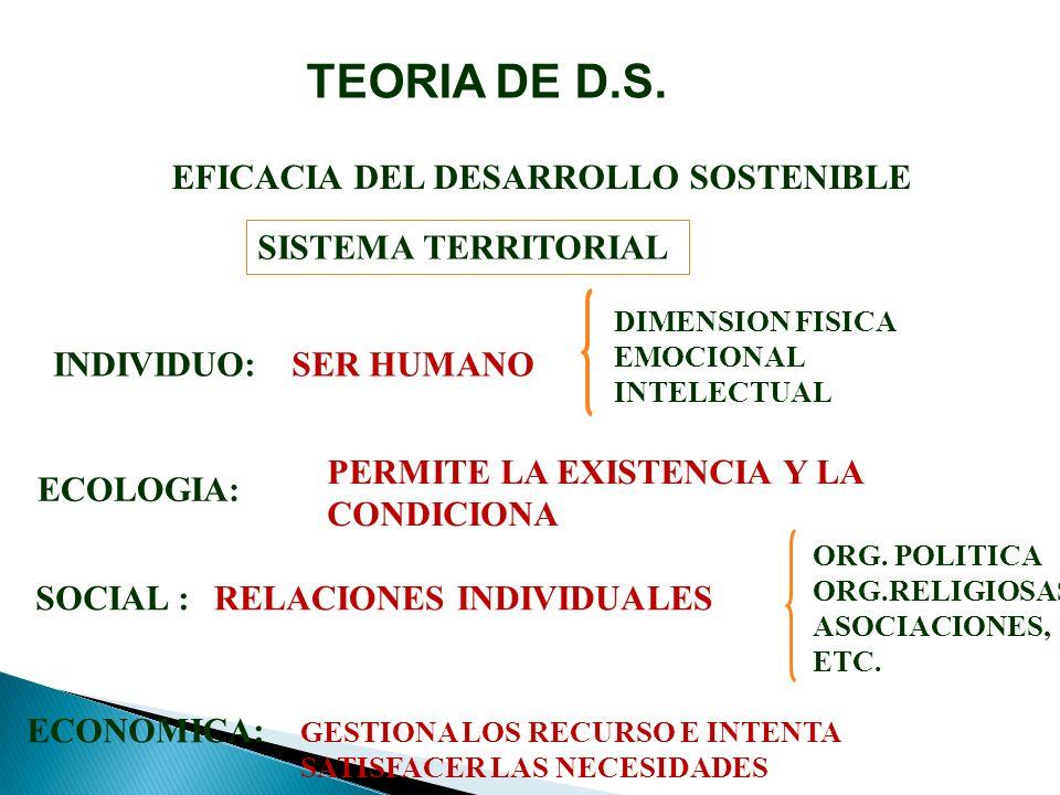 EFICACIA DEL DESARROLLO SOSTENIBLE SISTEMA TERRITORIAL INDIVIDUO:SER HUMANO DIMENSION FISICA EMOCIONAL INTELECTUAL ECOLOGIA: PERMITE LA EXISTENCIA Y LA CONDICIONA SOCIAL :RELACIONES INDIVIDUALES ORG.