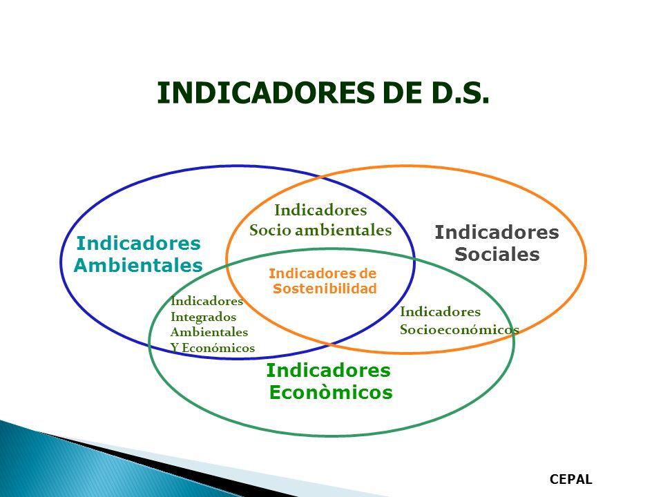 INDICADORES DE D.S.