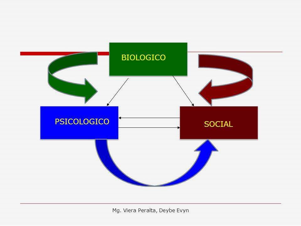 BIOLOGICO PSICOLOGICO SOCIAL Mg. Viera Peralta, Deybe Evyn