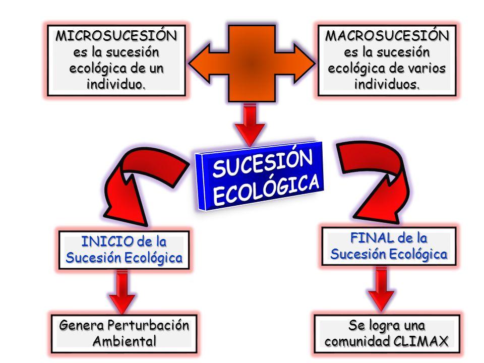 SIMBOLOGÍA Son representaciones gráficas que establecen las relaciones de los sistemas ecológicos.