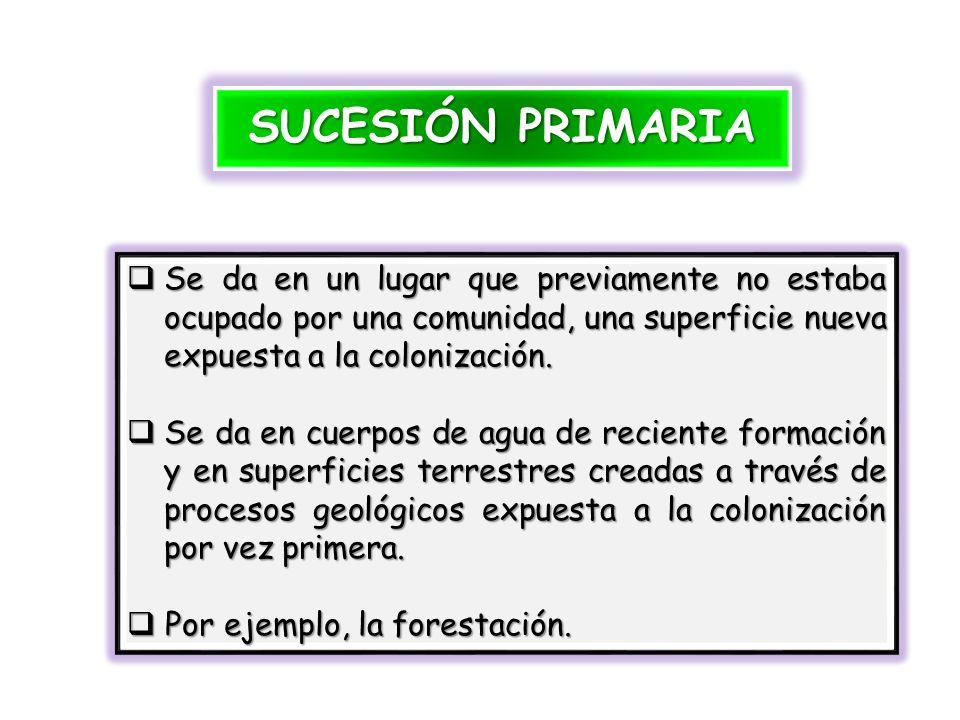Sucesión Hidrosere (en el agua) 1.Sumergida 4. Ciperácea 3.