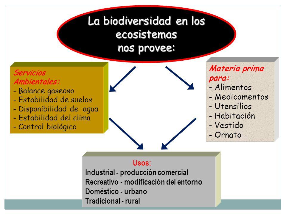 Servicios Ambientales: - Balance gaseoso - Estabilidad de suelos - Disponibilidad de agua - Estabilidad del clima - Control biológico Materia prima pa