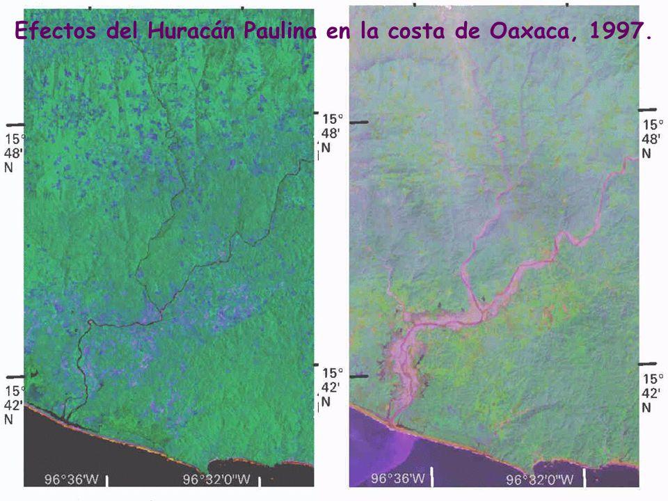 Efectos del Huracán Paulina en la costa de Oaxaca, 1997.