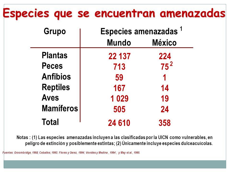 Grupo Especies amenazadas 1 MundoMéxico Plantas 22 137224 Peces 713 75 2 Anfibios 591 Reptiles 16714 Aves 1 02919 Mamíferos 50524 Total 24 610358 Espe
