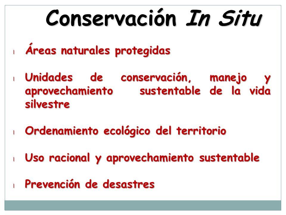 Conservación In Situ l Áreas naturales protegidas l Unidades de conservación, manejo y aprovechamiento sustentable de la vida silvestre l Ordenamiento