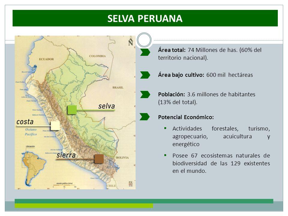 SELVA PERUANA Área total: 74 Millones de has. (60% del territorio nacional). Población: 3.6 millones de habitantes (13% del total). Potencial Económic