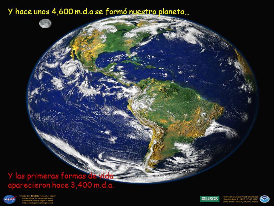 Y hace unos 4,600 m.d.a se formó nuestro planeta… Y las primeras formas de vida aparecieron hace 3,400 m.d.a.