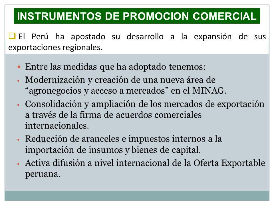 INSTRUMENTOS DE PROMOCION COMERCIAL Entre las medidas que ha adoptado tenemos: Modernización y creación de una nueva área de agronegocios y acceso a m