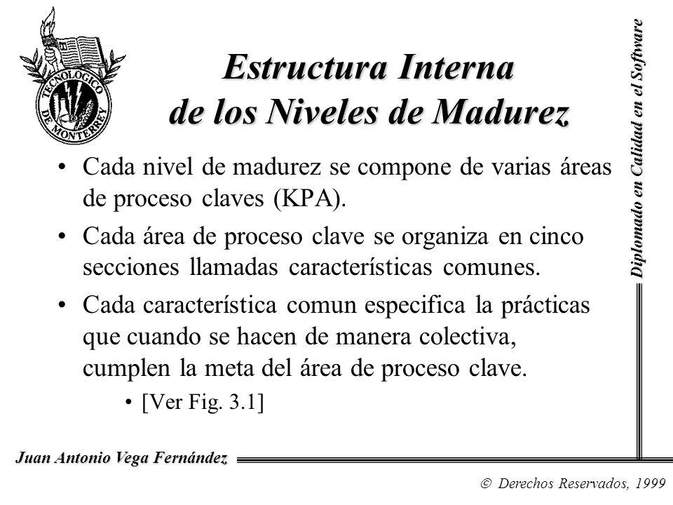 Diplomado en Calidad en el Software Derechos Reservados, 1999 Juan Antonio Vega Fernández Estructura Interna de los Niveles de Madurez Cada nivel de m