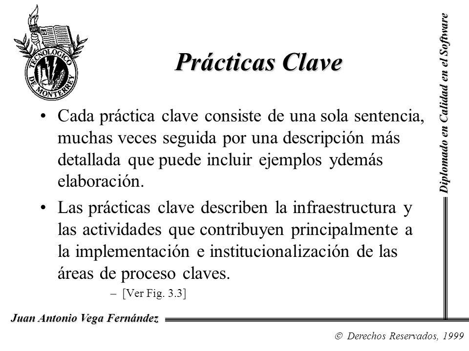 Diplomado en Calidad en el Software Derechos Reservados, 1999 Juan Antonio Vega Fernández Cada práctica clave consiste de una sola sentencia, muchas v